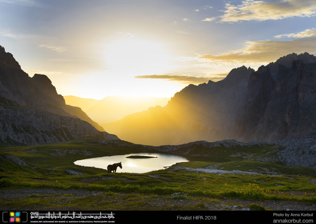 Beautiful lake near the Tre Cime in Dolomiti Alps. In the morning light formed fairytale impression, the horse suddenly looks like a unicorn. The picture brings us to the childhood dreams and imagined worlds.  The horse on the photo probably belongs to the people living in the refugio.